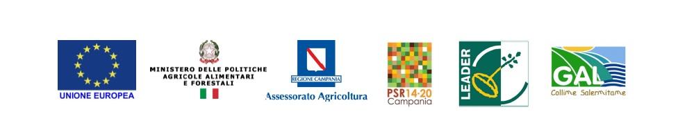Comunicato stampa del Presidente del GAL Antonio Giuliano (2)